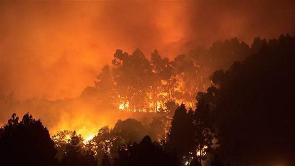 Tây Ban Nha: Hơn 8.000 người sơ tán vì cháy rừng ảnh 1