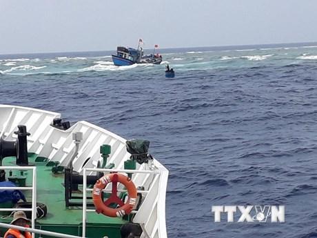 Khánh Hòa: Bàn giao 41 ngư dân Quảng Nam được cứu hộ trên biển ảnh 1