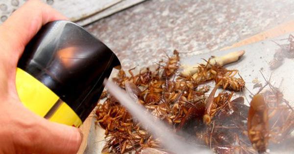 'Trảm' cơ sở bán thuốc diệt côn trùng chung với thực phẩm ảnh 1