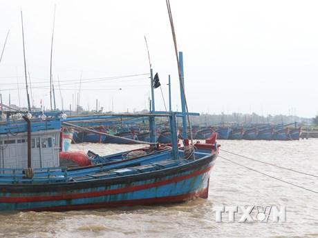 Ứng phó với bão số 6: Phú Yên ra lệnh cấm biển, cho học sinh nghỉ học ảnh 1