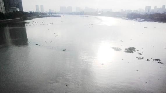 Cấp bách bảo vệ nguồn nước trên lưu vực hệ thống sông Đồng Nai ảnh 1