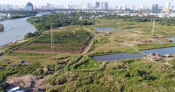 Vụ đất công ở Phước Kiển: Bắt giam 2 nguyên lãnh đạo Công ty Tân Thuận ảnh 1