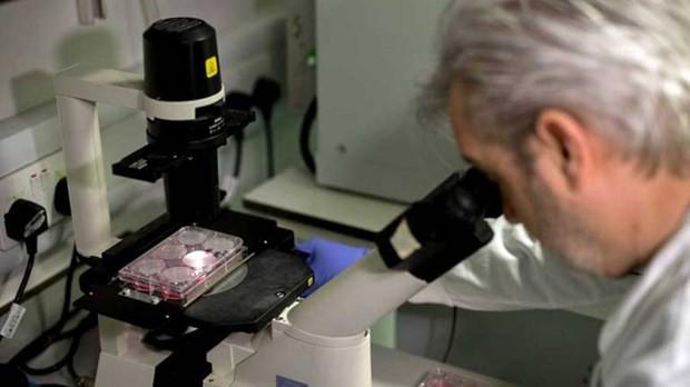 Thêm nỗ lực phát triển vaccine ngừa Covid-19 ảnh 1