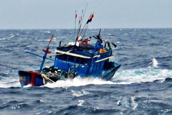 Biên phòng Lý Sơn cứu 3 ngư dân tàu cá bị phá nước ảnh 1