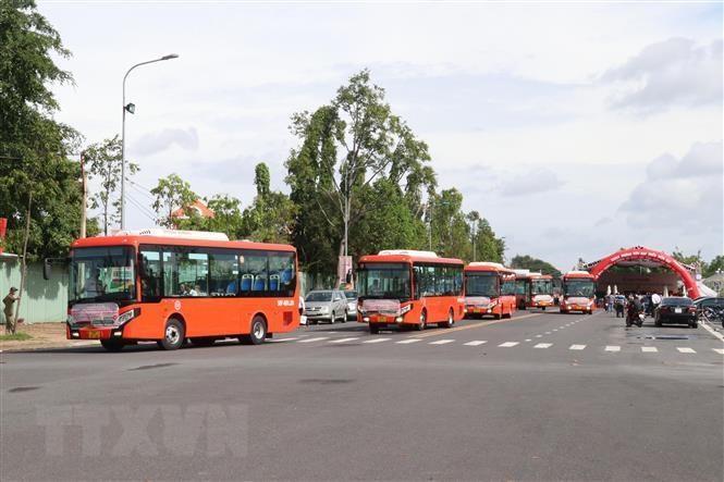 Cần Thơ khai trương 5 tuyến xe buýt nội tỉnh không trợ giá ảnh 1