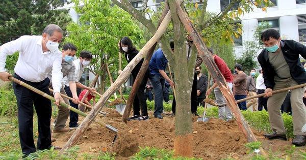 Thừa Thiên - Huế: Xây dựng môi trường 'xanh, sạch, đẹp' tại đơn vị ảnh 1