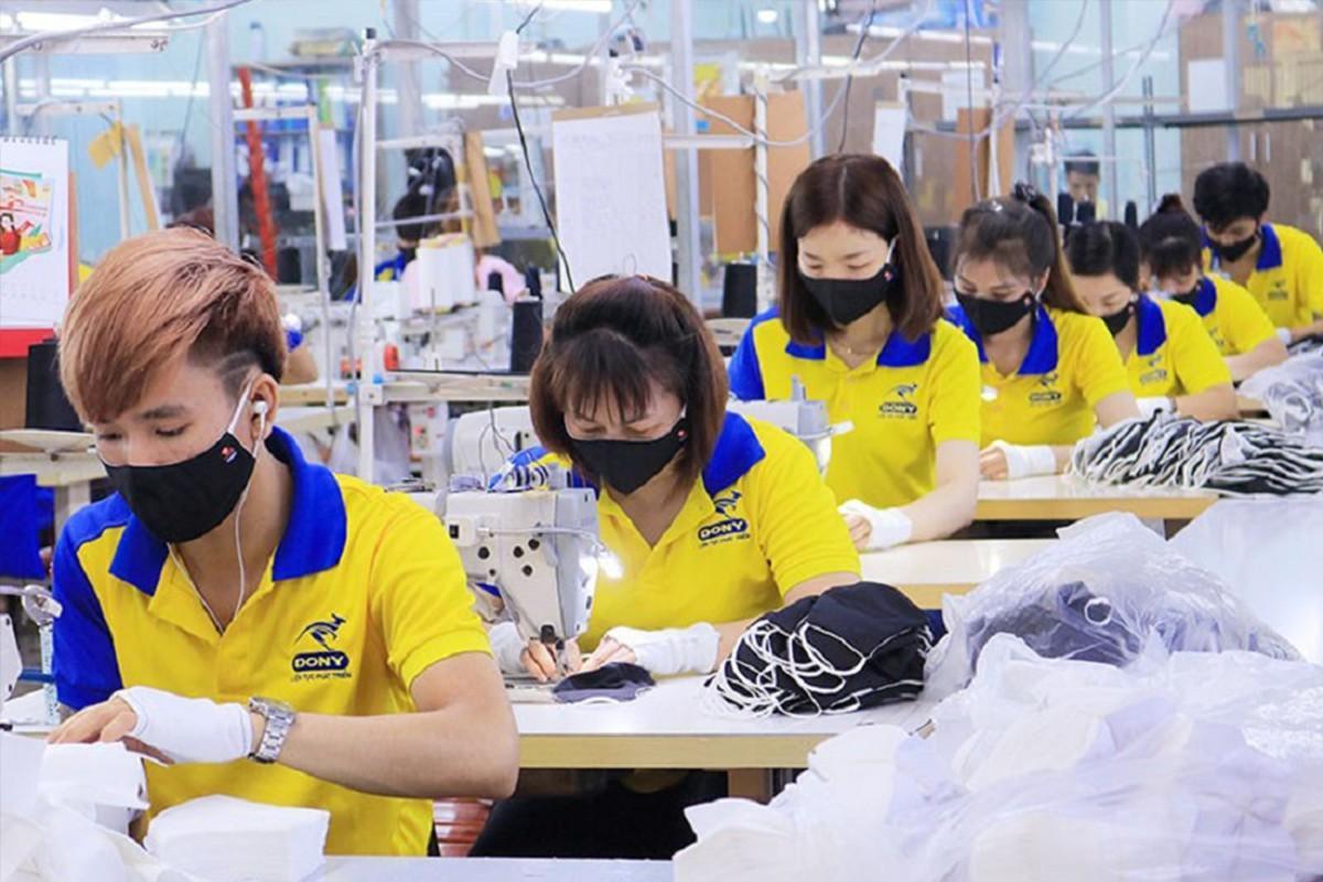 Công ty không trả lương, người lao động có quyền nghỉ ngay? ảnh 1