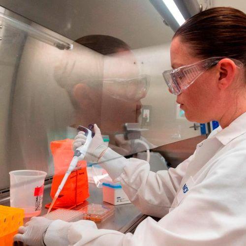 Mỹ đẩy mạnh nỗ lực phát triển vắcxin chống dịch bệnh COVID-19