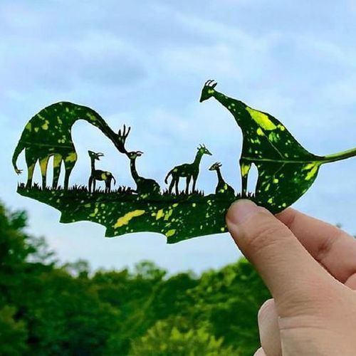 Nghệ sĩ Nhật mắc chứng ADHD với tài năng 'kể chuyện' trên lá cây