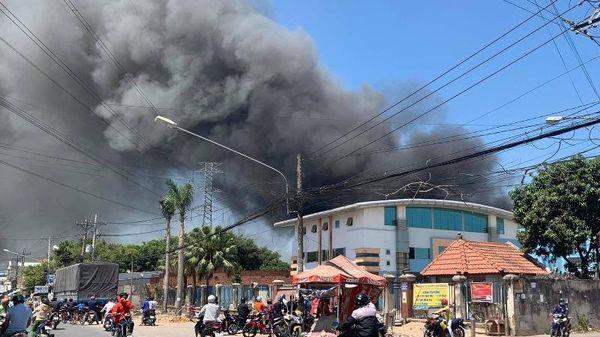 Bình Dương: 1 công ty bị cháy do cháy cỏ khô lan sang