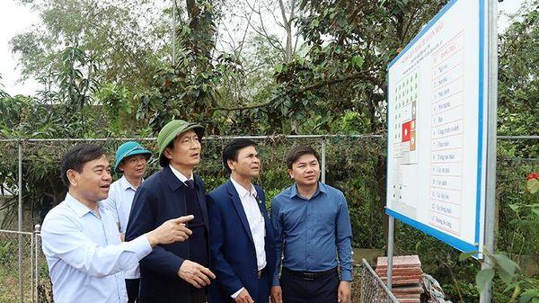 Vùng lũ ở Cẩm Xuyên cần giữ lại lũy tre xanh khi cải tạo vườn tạp
