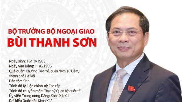 Tóm tắt quá trình công tác Bộ trưởng Bộ Ngoại giao Bùi Thanh Sơn