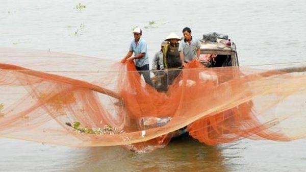 Cá nước ngọt suy giảm nghiêm trọng