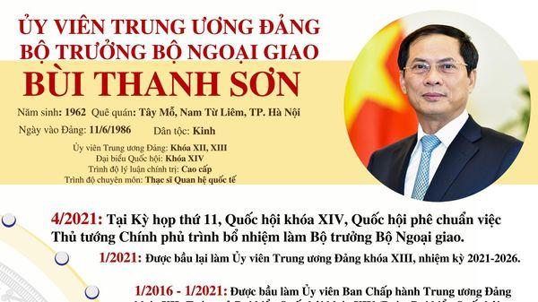 Tiểu sử Ủy viên Trung ương Đảng, Bộ trưởng Bộ Ngoại giao Bùi Thanh Sơn