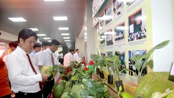 Đồng Nai dẫn đầu về xây dựng nông thôn mới kiểu mẫu