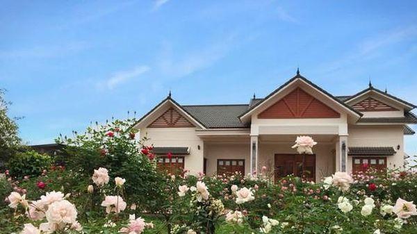 Căn nhà tràn ngập hoa hồng ở Ba Vì gây 'bão' mạng