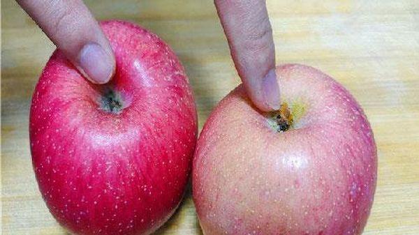 Mua táo chọn quả rốn to hay nhỏ? Đầu bếp mách bạn cách chọn táo mọng nước giòn ngon nhất