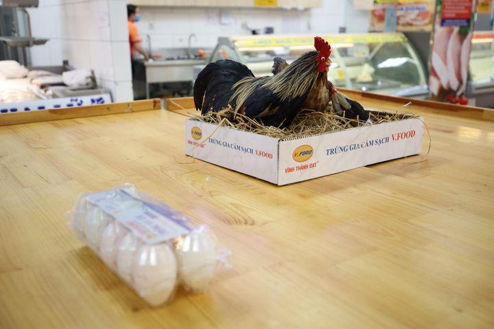 Siêu thị gánh lỗ khi bán trứng giá bình ổn - Zing - Tri thức trực tuyến