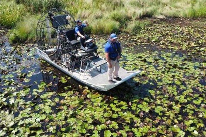 Mỹ: Phát hiện thi thể trong bụng cá sấu nặng hơn 200 kg - Báo Người Lao Động