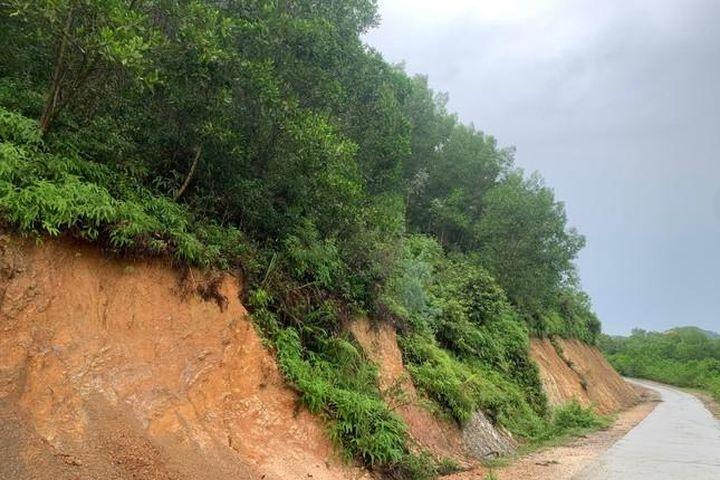 Tiếp sự việc đất rừng đấu giá được sang tên cho cá nhân: Bất nhất trong ý kiến của xã và Sở TN&MT Hà Tĩnh - Tạp chí Gia Đình Việt Nam