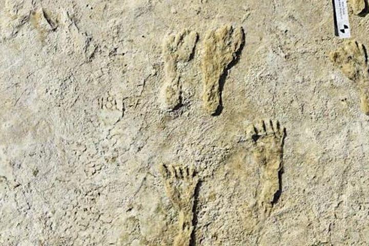 Dấu chân người cổ đại Bắc Mỹ được tìm thấy ở tiểu bang New Mexico - Báo Đại Đoàn Kết