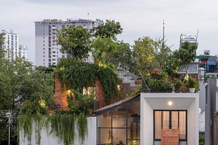 Ngắm căn nhà phố có cả 1 công viên cây xanh trên mái ở Sài Gòn - Báo Pháp Luật TP.HCM