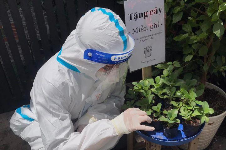Tình nguyện viên được tặng cây xanh khi đi làm nhiệm vụ - Zing - Tri thức trực tuyến