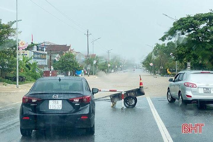 Báo cáo phương án khắc phục tình trạng ngập lụt trên QL 1 qua TX Kỳ Anh trước ngày 5/10 - Báo Hà Tĩnh