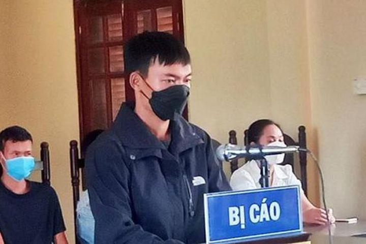 Thuê người phá rừng để trồng cây, nhận án 18 tháng tù - Pháp Luật Plus