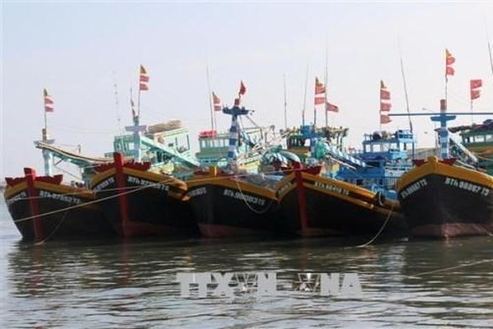 Khắc phục 'Thẻ vàng' IUU: Bình Thuận kiên quyết xử lý nghiêm các trường hợp vi phạm - Bnews
