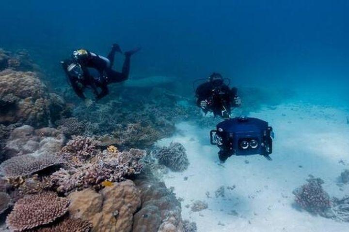 Dùng công nghệ thực tế ảo để 'mang đại dương đến cho mọi người' - Kinh tế Môi trường