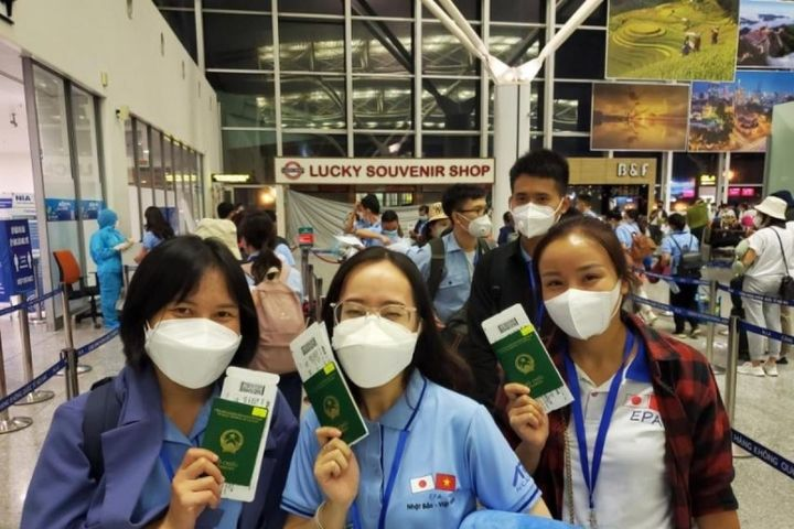 Điều dưỡng, hộ lý của Việt Nam được Nhật Bản đánh giá cao - Báo VOV