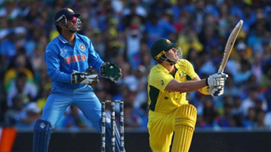 Kết quả hình ảnh cho cricket ở Úc