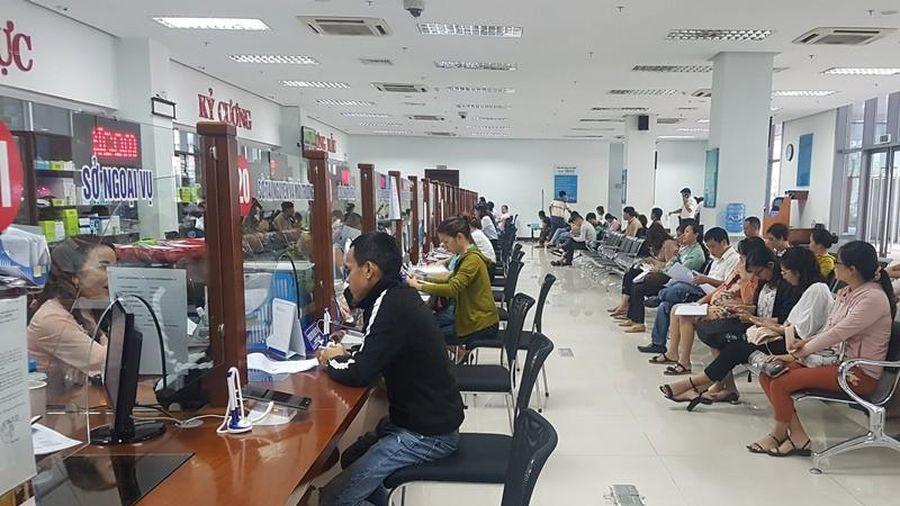 Đà Nẵng chưa phát hiện tham nhũng qua tự kiểm tra năm 2019