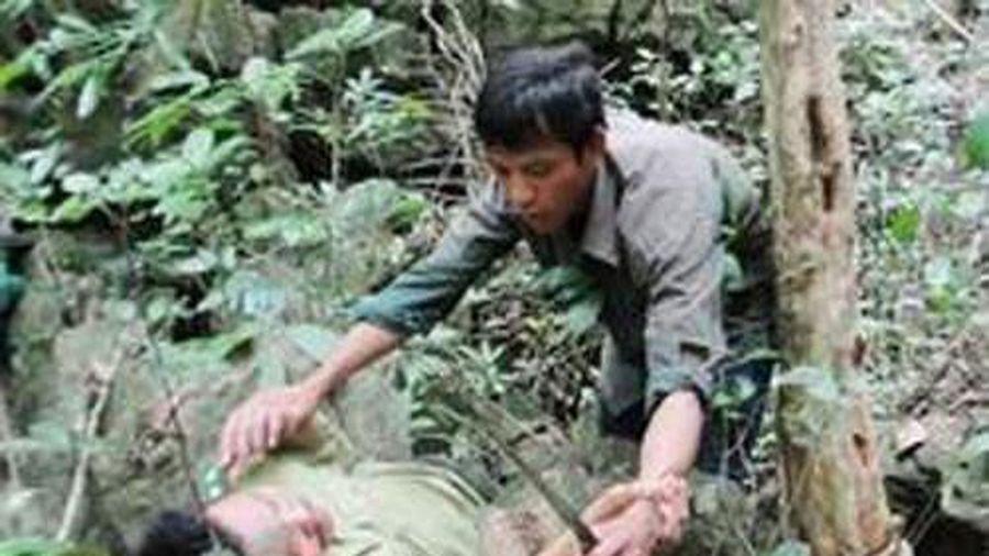 Cán bộ bảo vệ rừng bị hành hung tại trụ sở