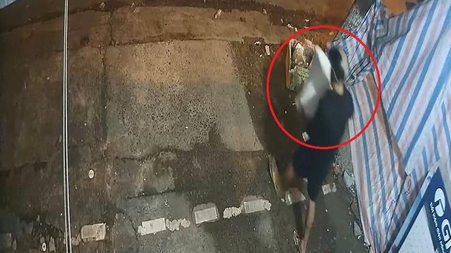 Kẻ gian bỏ lại cây cảnh lấy trộm chậu ở Đà Nẵng