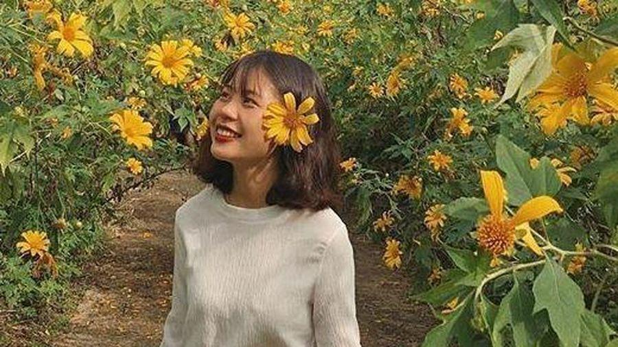 Chìm đắm trong sắc vàng đồi hoa dã quỳ ở ngoại thành Hà Nội