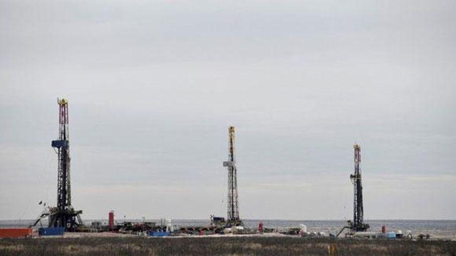 Giá dầu bất ngờ leo lên mức đỉnh 2 tháng với kỳ vọng Mỹ - Trung nối lại đàm phán