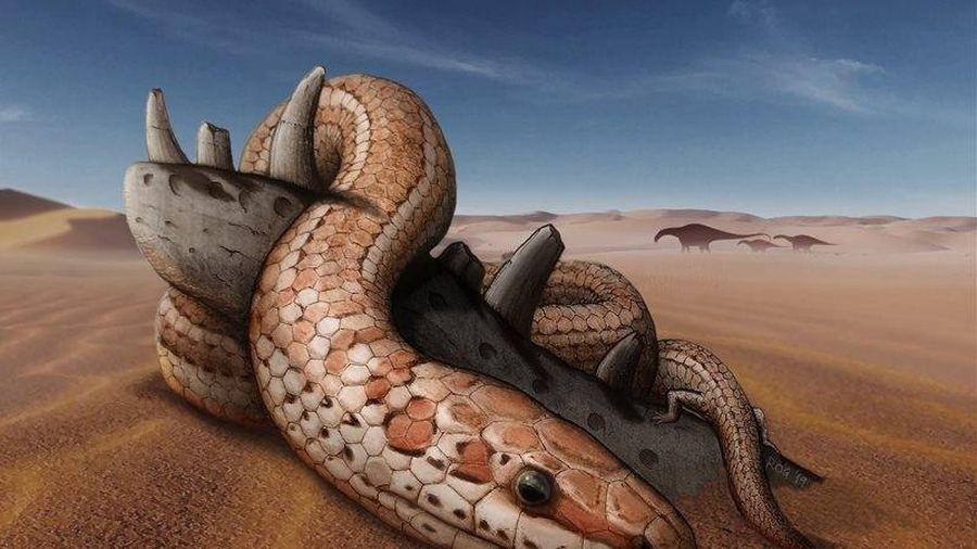 Phát hiện hóa thạch tiết lộ loài rắn thời cổ đại có chân