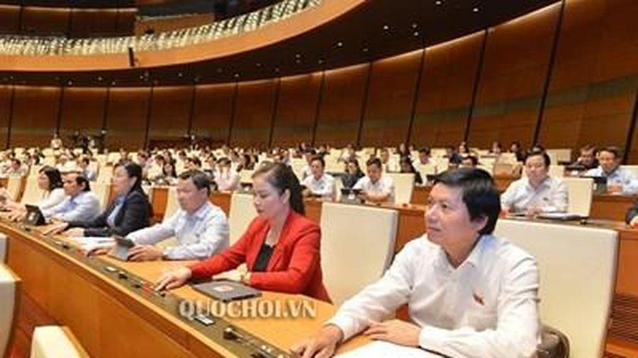 Quy định giảm 10 - 15% số đại biểu Hội đồng nhân dân các cấp