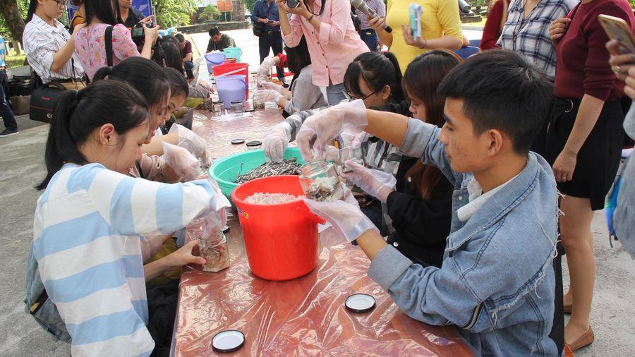 Sinh viên Đà Nẵng giao lưu với nghệ nhân làng nước Mắm Nam Ô