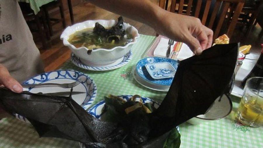Khóc thét với món đặc sản súp dơi nguyên con ở Trung Quốc