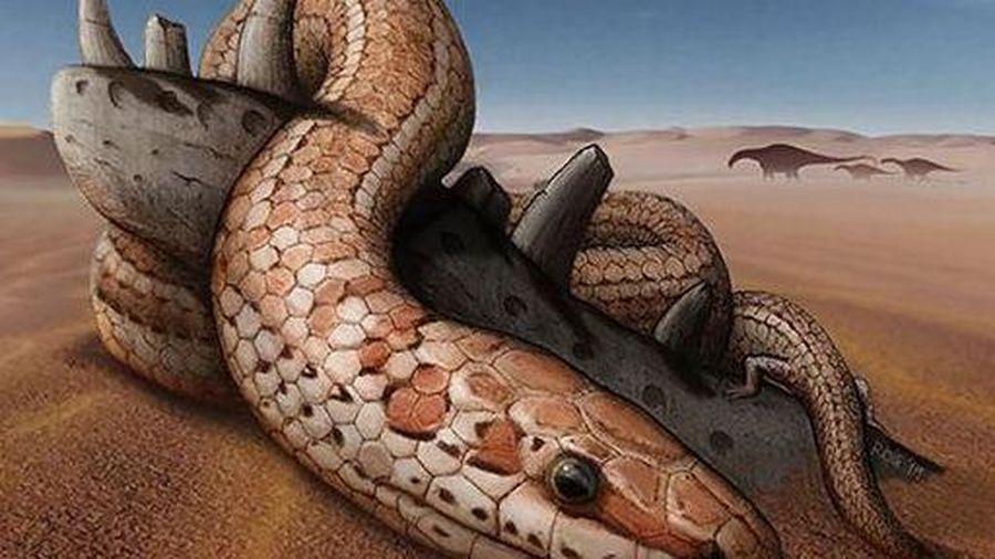 Phát hiện hóa thạch rắn cổ đại lý giải tại sao rắn không có chân