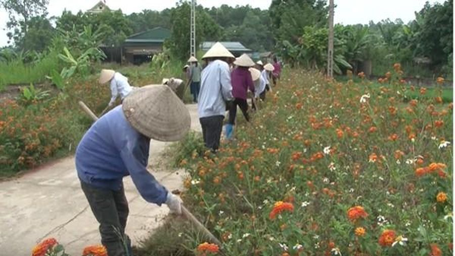 Phú Thọ: Phụ nữ huyện Thanh Ba chung sức xây dựng nông thôn mới