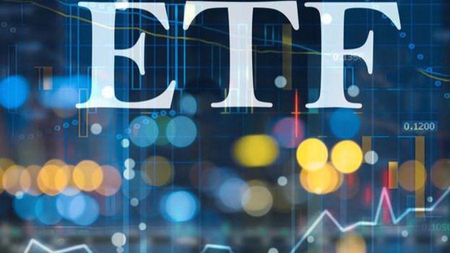 VNDIRECT: FTSE Vietnam Index tăng tỷ trọng VIC, HPG, NVL, nhiều khả năng loại GEX