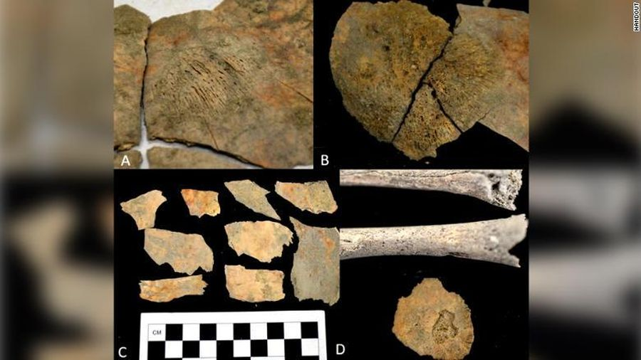 Ecuador trưng bày hơn 500 cổ vật thu hồi và đưa về từ Đức