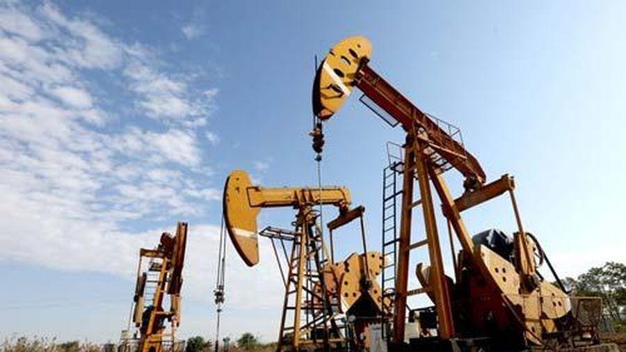 Giá xăng, dầu (22/11): Bất ngờ tăng mạnh