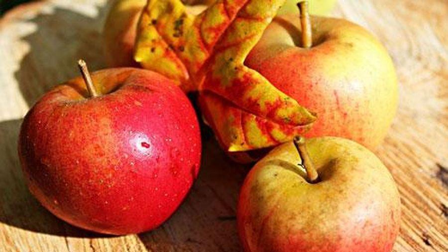 5 bí quyết giúp trái cây chín nhanh không cần hóa chất