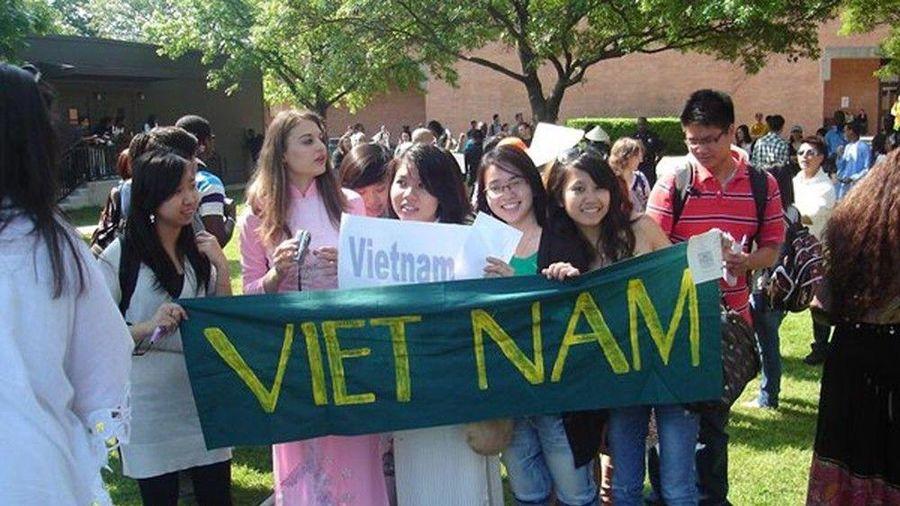 Khi du học sinh Việt Nam được khuyến khích về nước lấy số liệu cho đề tài tốt nghiệp?
