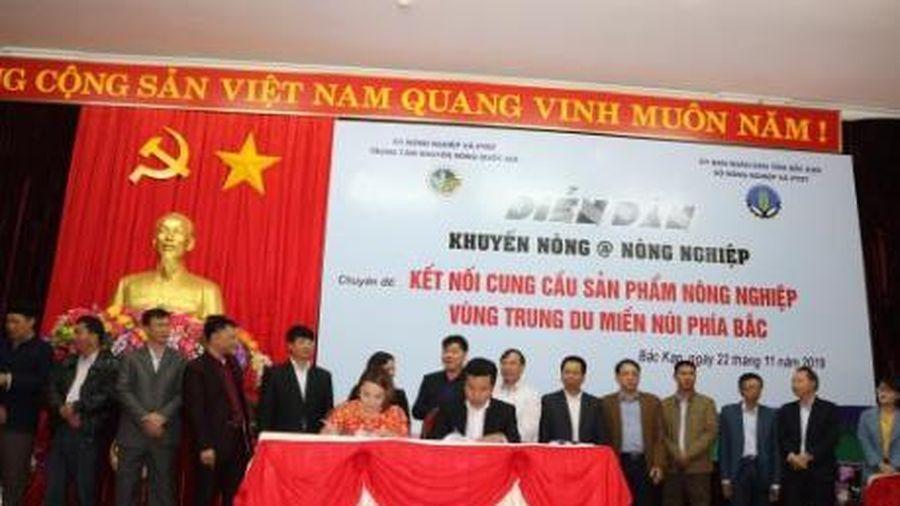 Big C ký kết với 9 đối tác, tạo sinh kế cho 200 hộ nông dân